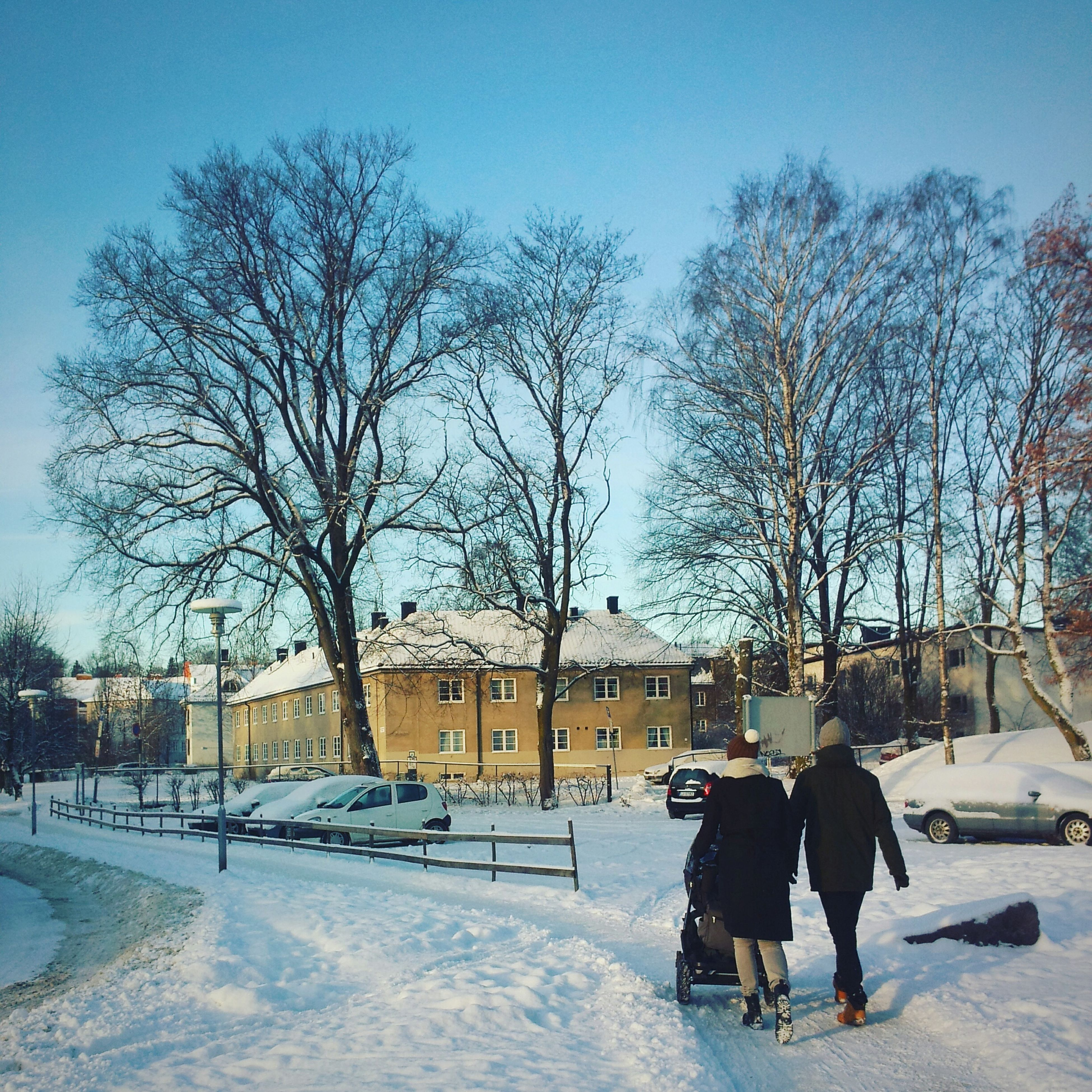 winter, cold temperature, snow, bare tree, tree, season, lifestyles, men, leisure activity, rear view, clear sky, full length, person, walking, building exterior, built structure, weather