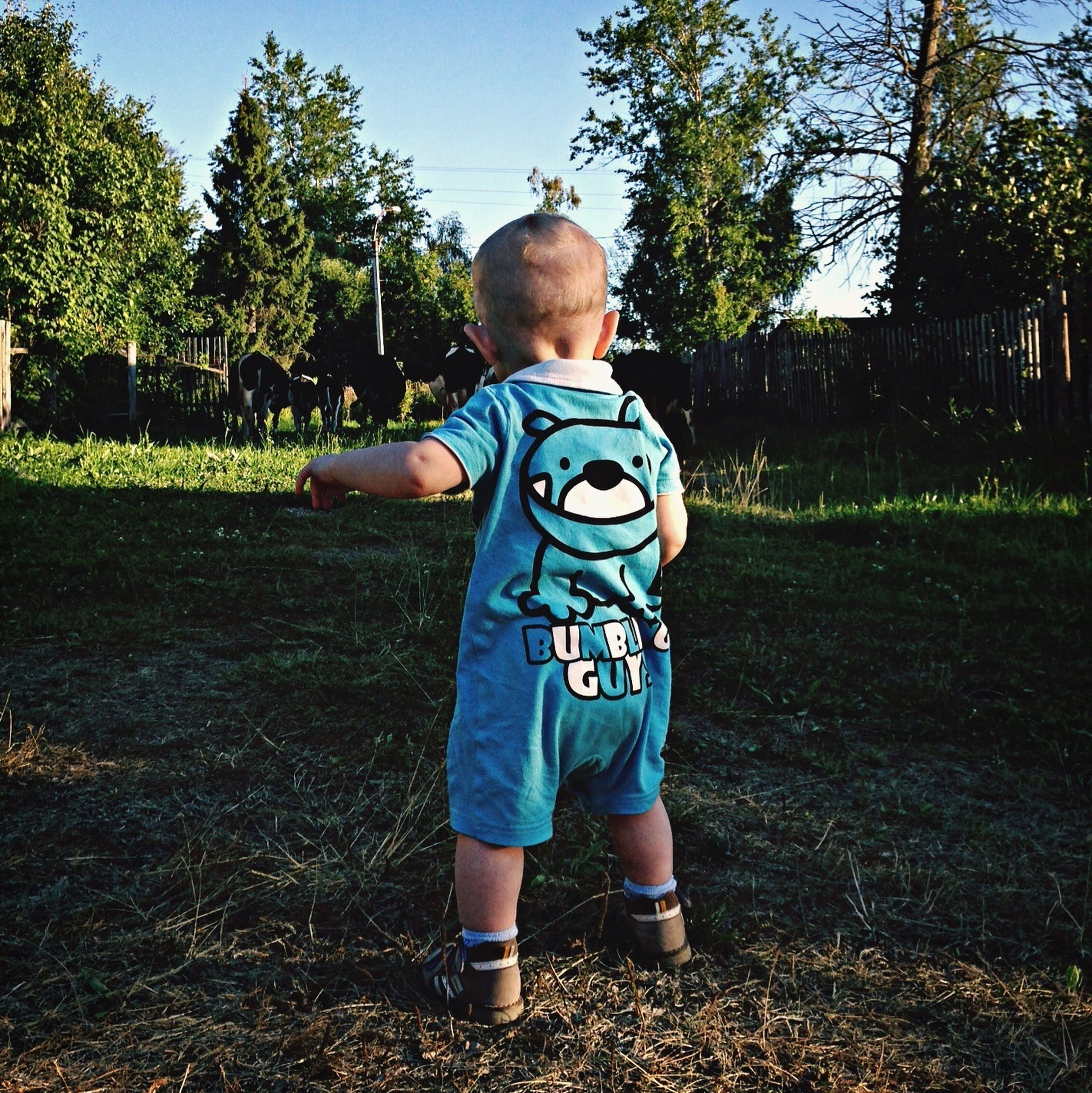 childhood, elementary age, full length, boys, casual clothing, tree, person, innocence, lifestyles, leisure activity, girls, cute, grass, park - man made space, sunlight, day, rear view, playful