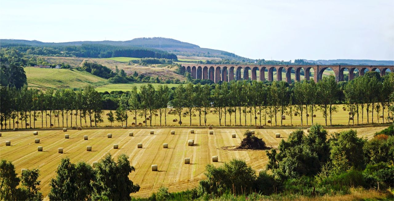 Learn & Shoot: Leading Lines Landscape Culloden Viaduct