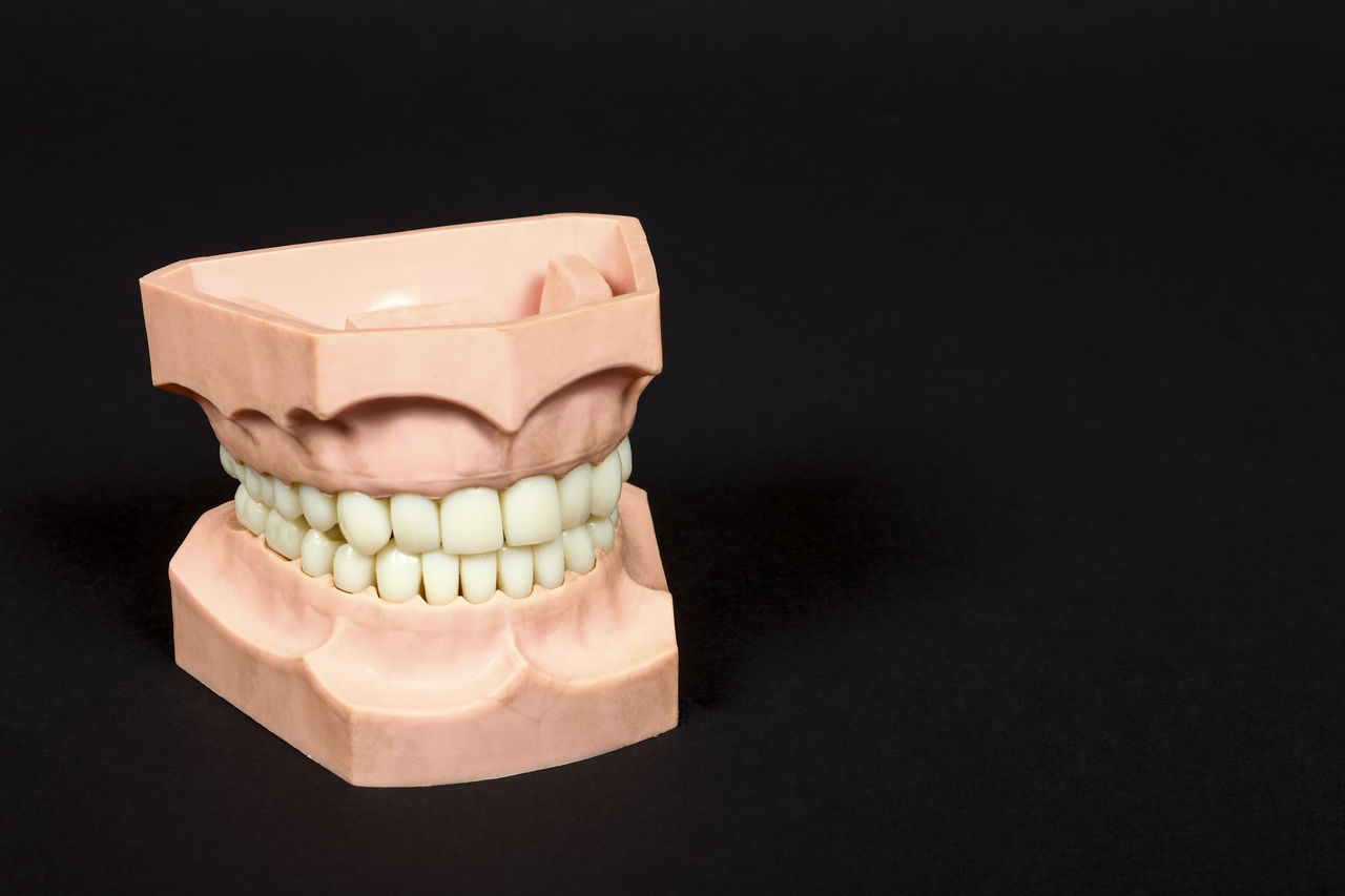 A set of plastic teeth Black Background Check Up Close-up Dental Dentist Dentistry Denture Gum Healthcare And Medicine No People Prosthetic Equipment Teeth Tooth