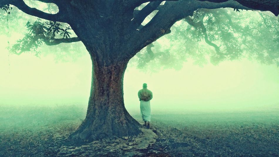 Nature Beauty In Nature Foggymorning Loneliness Tree Fog Winter Bestclick Photography Reflection Cloud - Sky Tranquil Scene One Man Only Only Men One Person Day