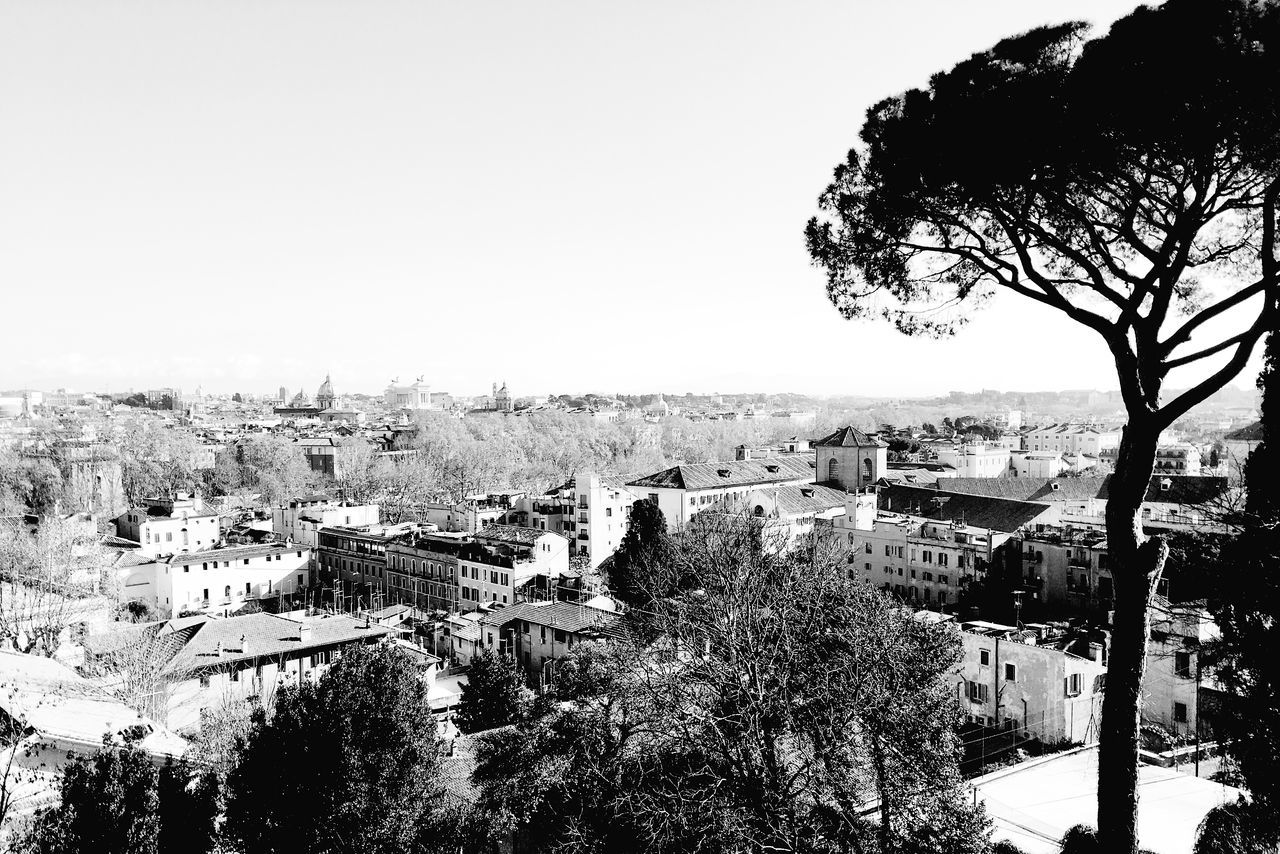 eastern Rome Beauty In Nature Clear Sky Day IPhoneography Iphonesia Landscape Large Group Of People Nature Outdoors People Scenics Sea Sky Tree VSCO Vscocam Vscogood Water