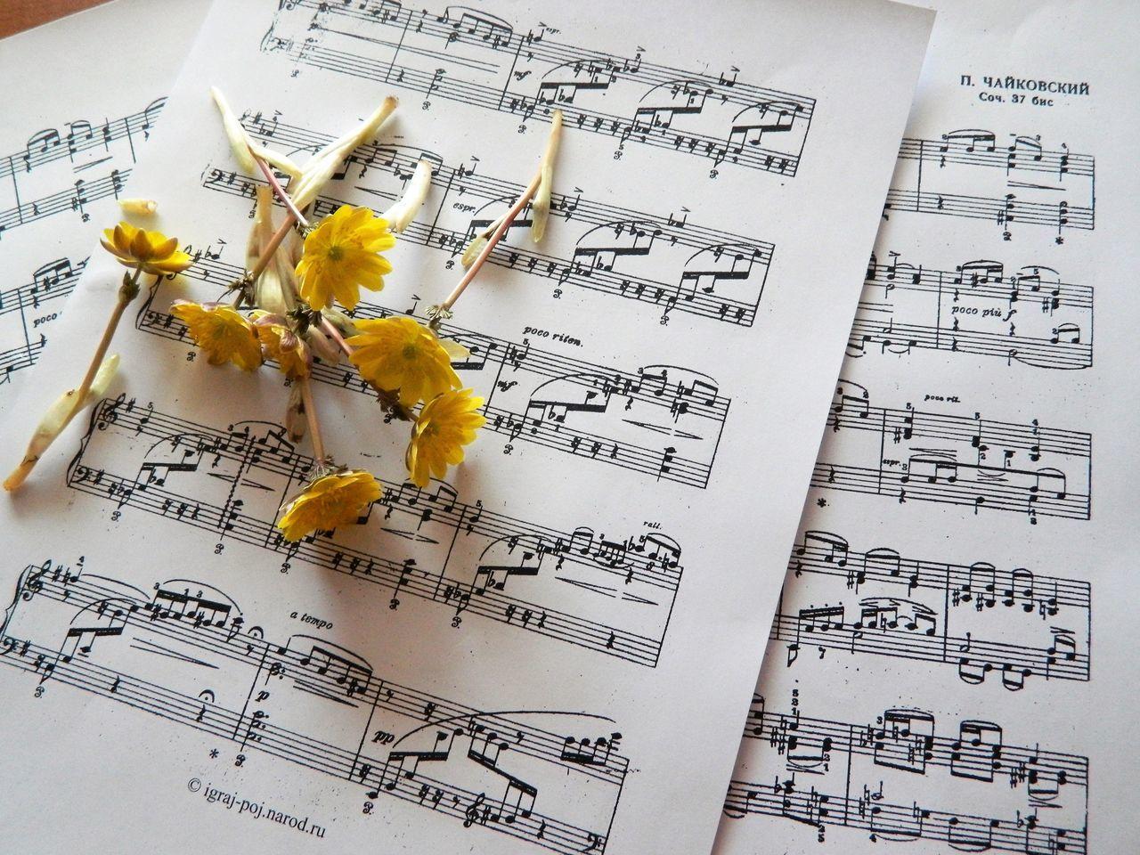 Чайковский.времена года: зима,весна,лето,осень Day Formula Handwriting  No People Piano Moments Yellow Времена года, ноты,цветы