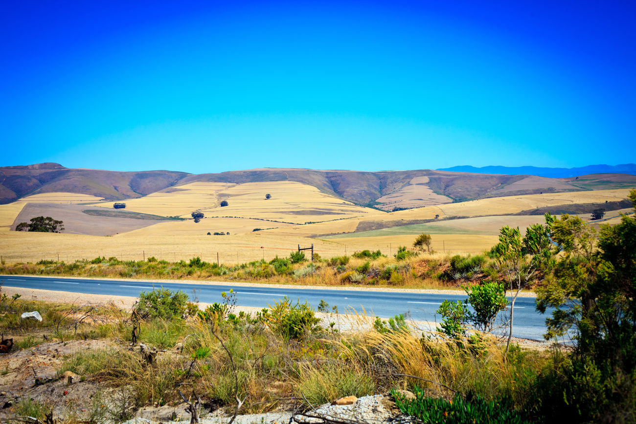Overberg region, Western Cape, South Africa Africa Arid Arid Climate Beauty In Nature Blue Blue Sky Cape Town Clear Sky Day Desert Empty Highway Lake Landscape Mountain Nature No People Outdoors Overberg Scenics Sky South Africa Travel Water Western Cape