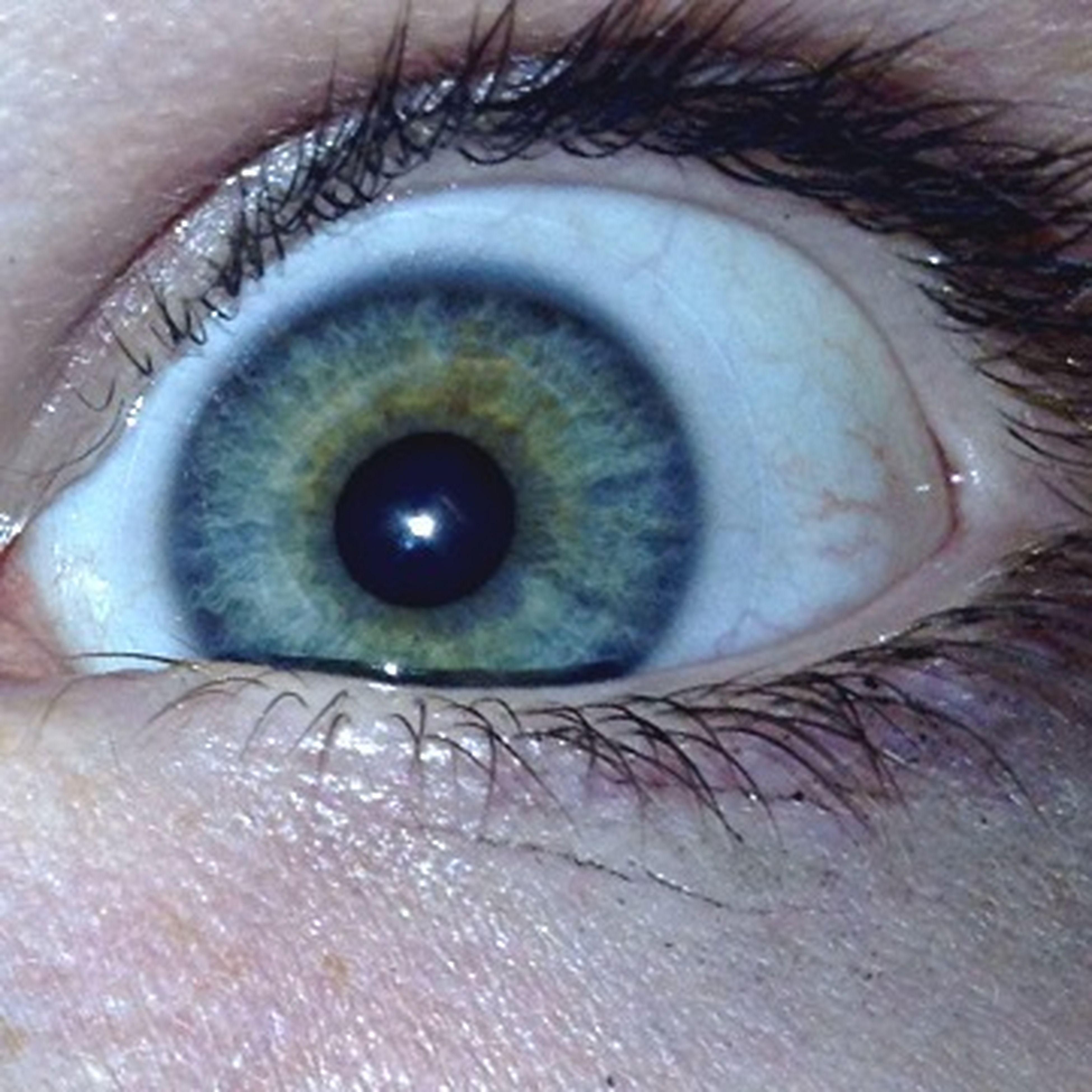 My Eye.(: