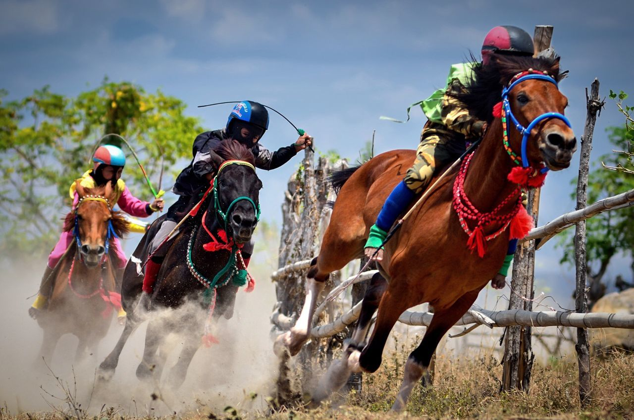 Little Rider Horse Competition Horse Racing Jockey Sumbawaisland Indonesia Culture Wonderful Indonesia