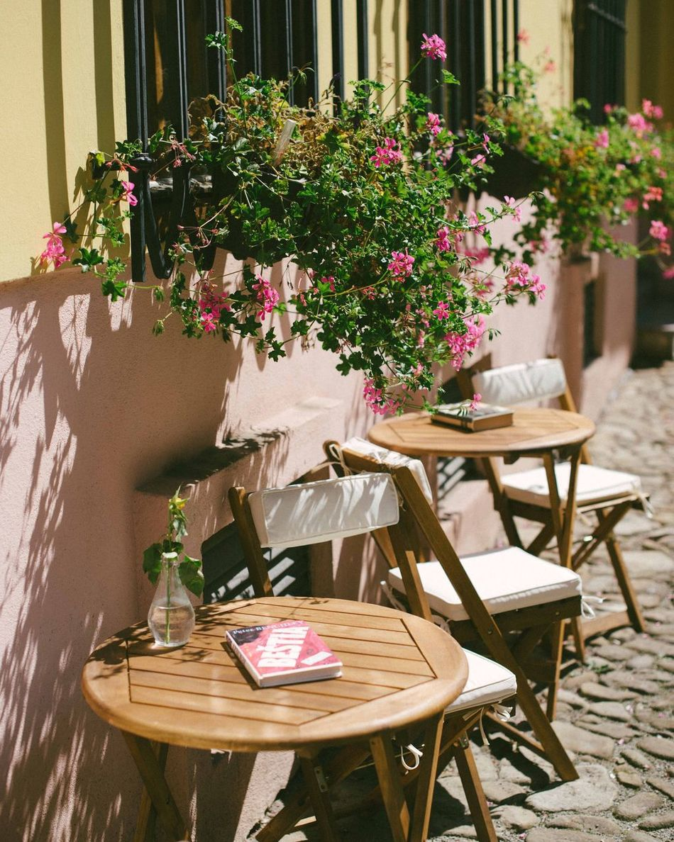 Cafe Time Cafe Sit And Stay Awhile Invitation To Relax Read Flowers In Window European Cafe