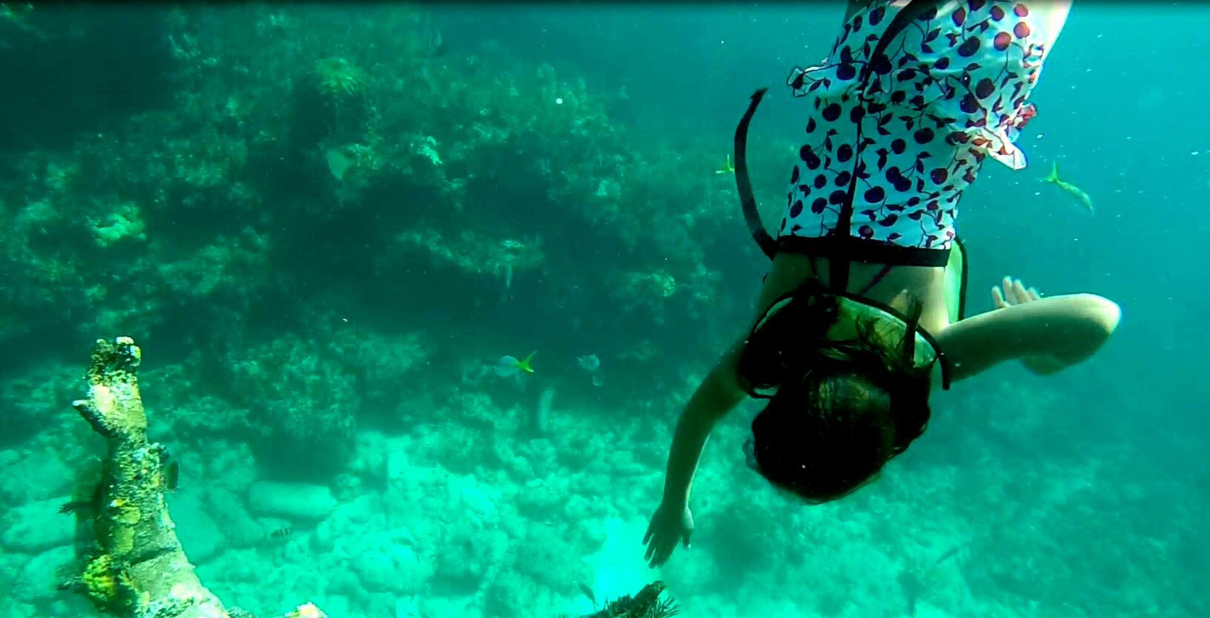 blue, underwater, water, sea, undersea, turquoise colored, swimming pool, swimming, sea life, high angle view, close-up, sunlight, nature, day, fish, no people, outdoors, shadow, beauty in nature, animal themes