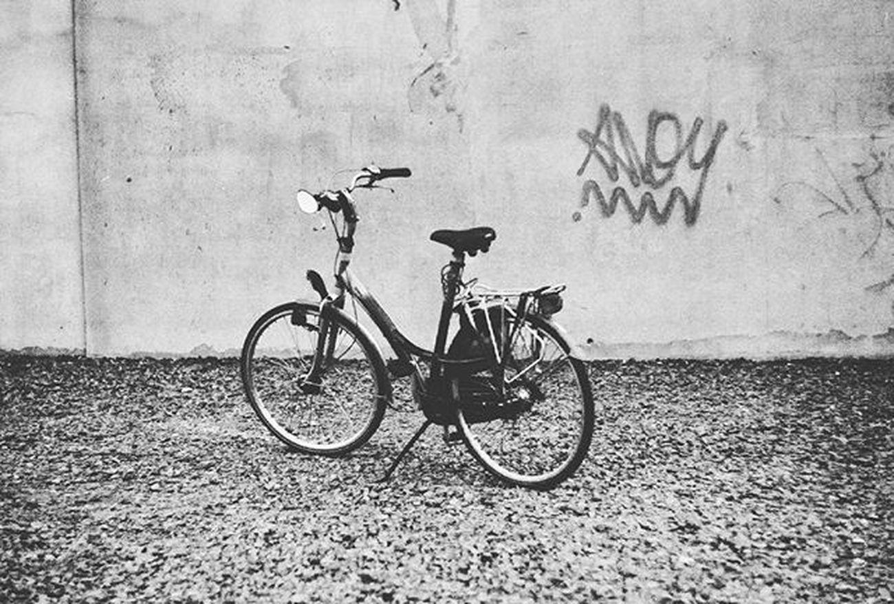 Bike Blackandwhite Analog Analogue Analoguephotography Film Filmshooters Filmphotographer Photographer Cracow 35mm Praktica Fuijfilm Rower