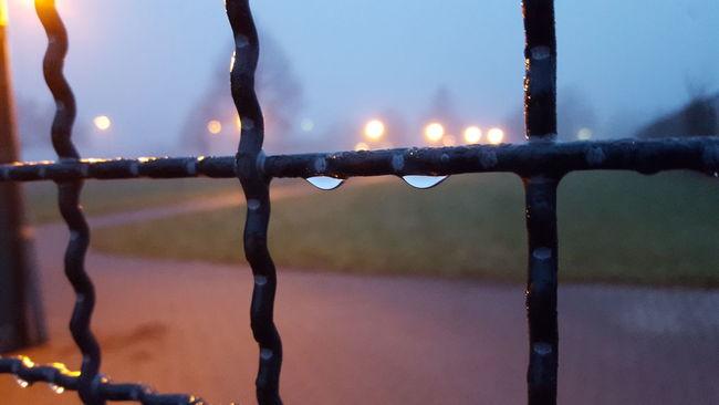 Raindrops Rain Grating BlurredGitterfenster Regentropfen Regen Verschwommen