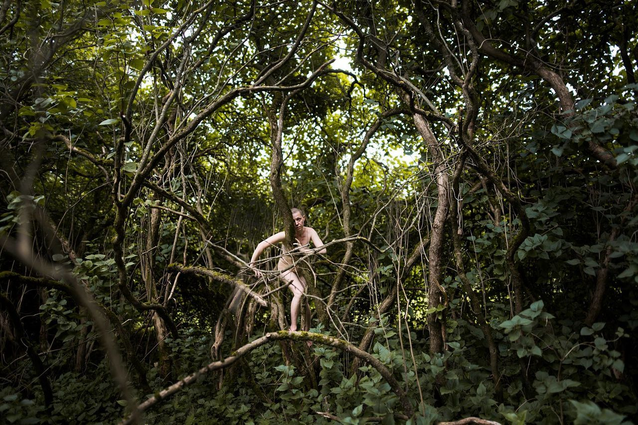 Adult Adults Only Beauty In Nature Branch Day Forest Full Length Growth Mid Adult Nature One Man Only One Person Outdoors People Real People Standing Tree Tree Trunk Water Young Adult