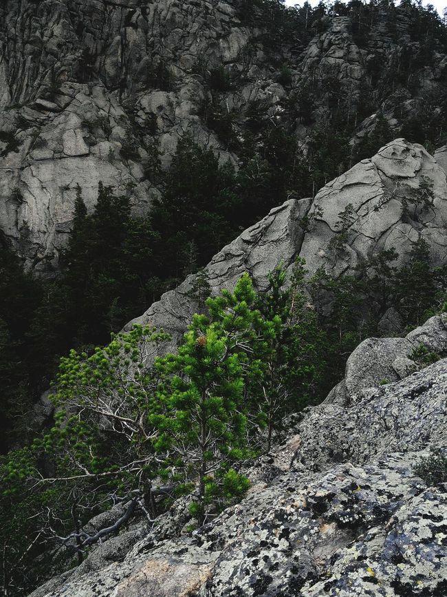 Nature Nature Photography Mountains EyeEm Best Shots Karkaralinsk My Smartphone Life Nature_collection Popular Photos