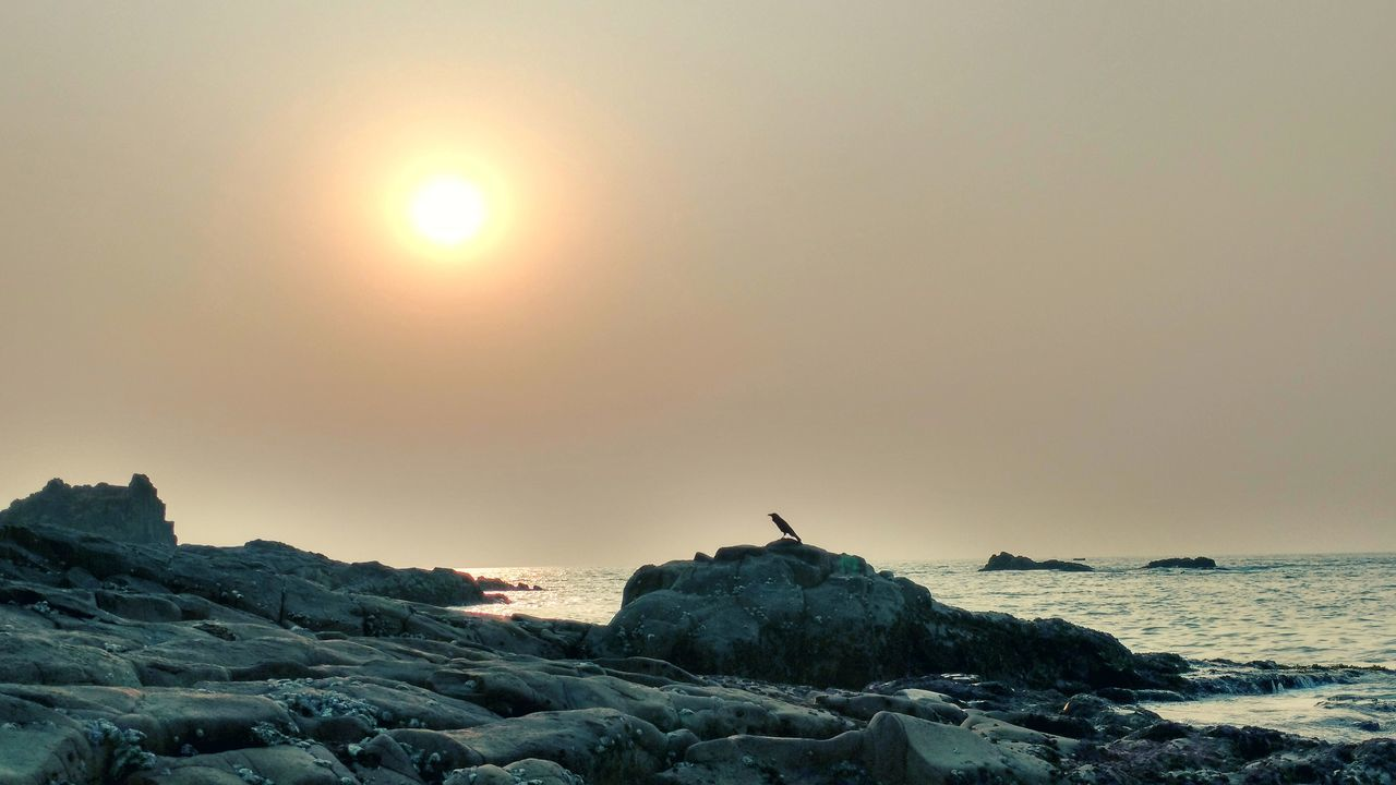 Let me Enjoy this Moment for a little while Longer , before I spread My Wings... Sunset Evening Island Beach Stmarysisland Malpe Beach Udupi Crow Rocks Seashore Seashore Photography Beachphotography EyeEm Best Shots Evening Sky Sun Nature Outdoors Sky Miles Away