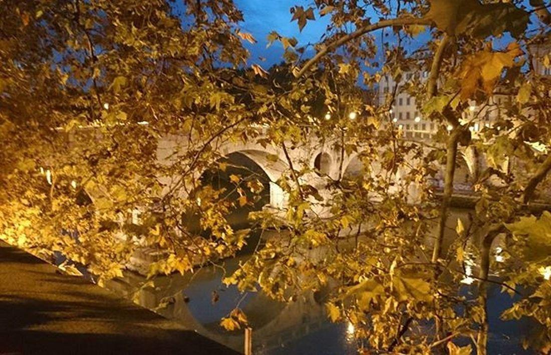 Roma Roma Rome Iloverome  LoveRome Fa Tree Agak Bough HID Bridge fények Lights Levelek Leaves Este Night Traveltorome Cometorome Magyarfoto Magyarfotósok