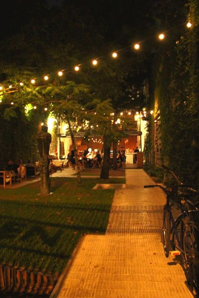 Party at night. Night Illuminated Street Light Lighting Equipment Outdoors Tree The Way Forward City No People Palermo, Buenos Aires Buenos Aires, Argentina  Travel Destinations Travel Photography