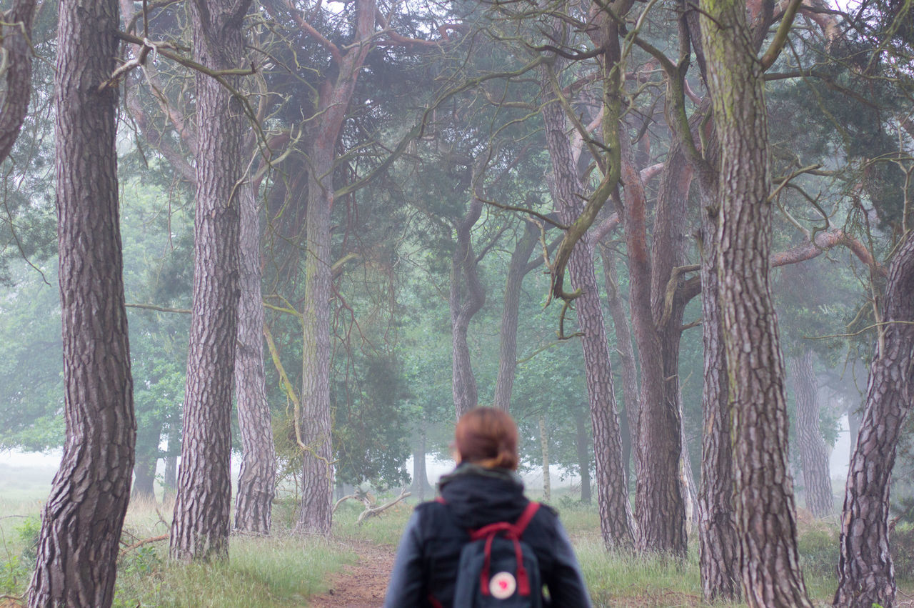 Rear View Of Woman Walking On Footpath Amidst Trees During Foggy Weather