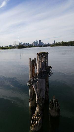 Waterfrontview On The Waterfront Toronto Lakeshore