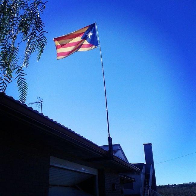 Nou màstil, una canya de pescar. Ara està molt més alta. Catalonia Catalunya FreeCatalonia Llibertat Independencia Independence Estelada