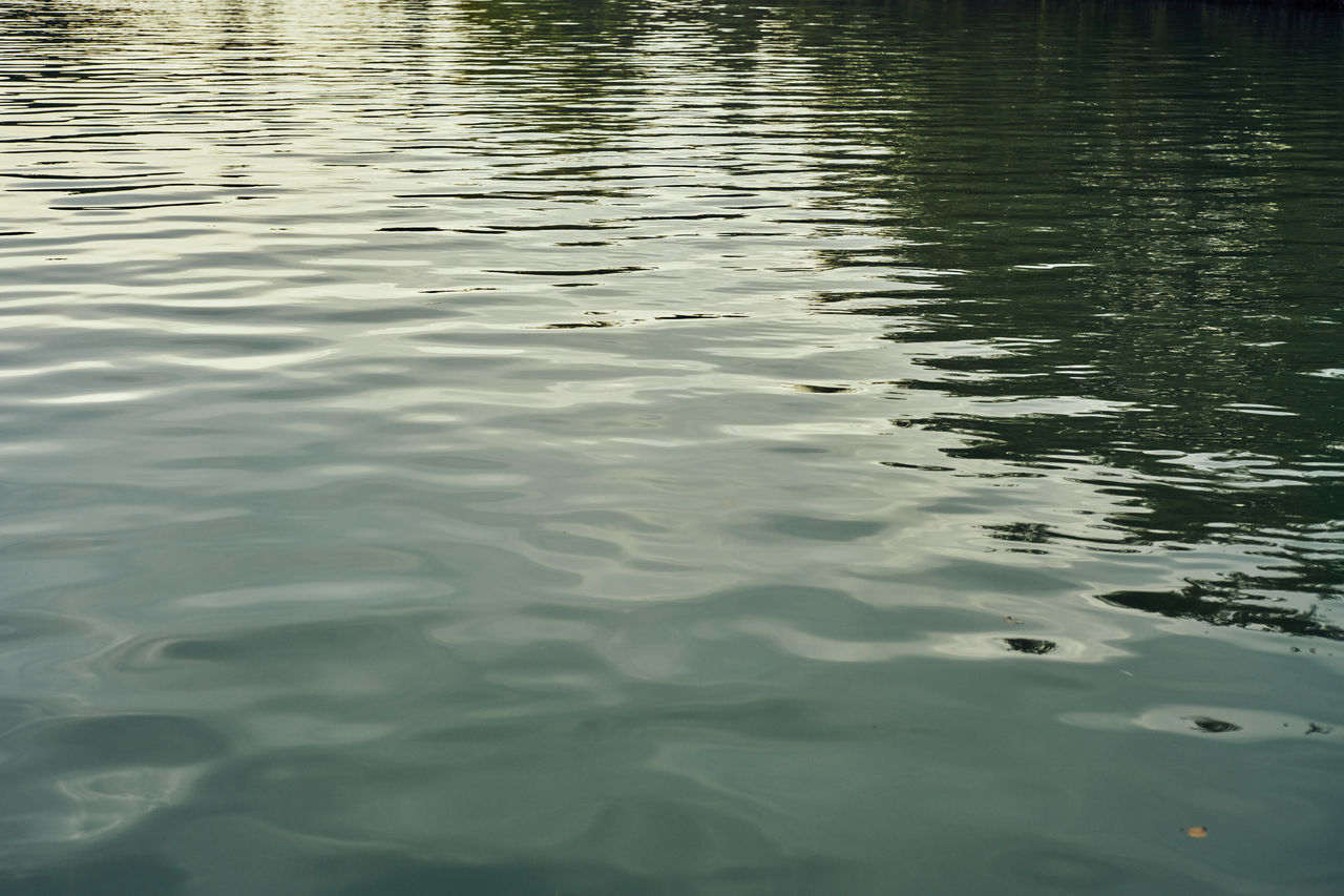 50mm Backgrounds Beauty In Nature Day Fiumicino Full Frame Isola Sacra Lake Leica Nature Non-urban Scene Reflection Rippled River Roma Scenics Sony A7RII Summicron Tevere Tranquil Scene Tranquility Water Water Surface Waterfront Wave Pattern
