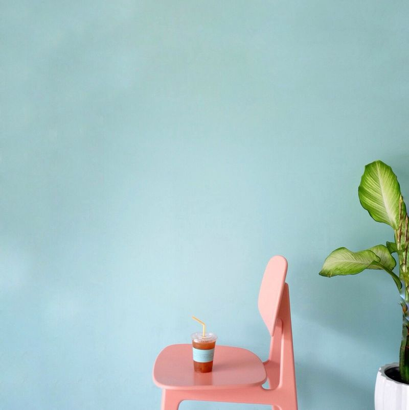 Cafe Latte Chilling Coffee Time Blue Color Happyness Cup Tree Barista Chaing Mai Morning Drinking Glass Colors Colorful Pastel Copy Space Clear Space Minimal