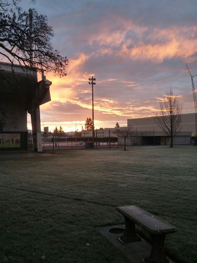 Pretty good view of my school