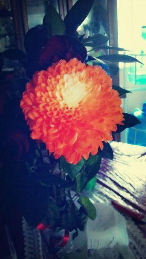 Flower*-*