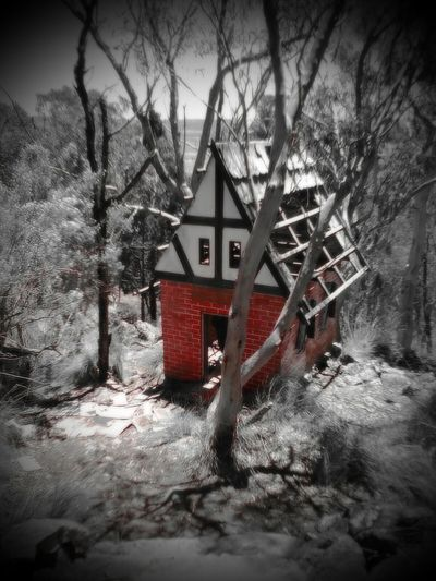 Because this place does not get Many Tourist anymore, the Little House are falling apart. We still had a ball though 🙌🙌 Tree Built Structure No People House Outdoors Day Architecture Small House In The Big Forest. Storytime Childsplay Fun Laughter Adventure