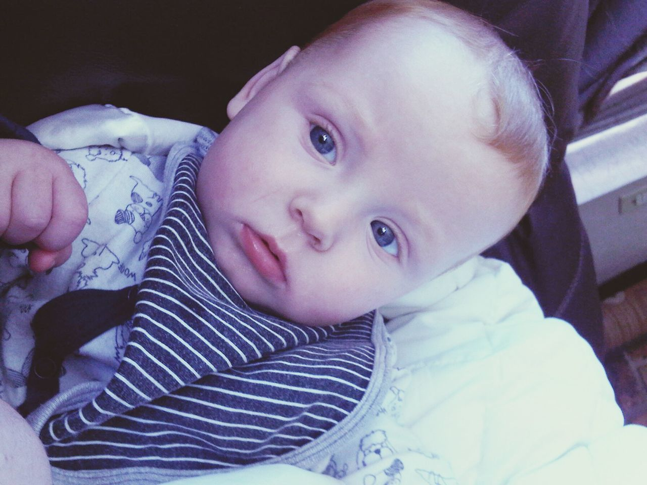 Blue RedHAIR ❤ Mybabyboy❤️❤️❤️❤️ Beautiful ♥ Perfection Perfection❤❤❤ 6months <3 Looking At Camera Portrait Child One Person People Childhood Indoors  Close-up Human Body Part Adult Day