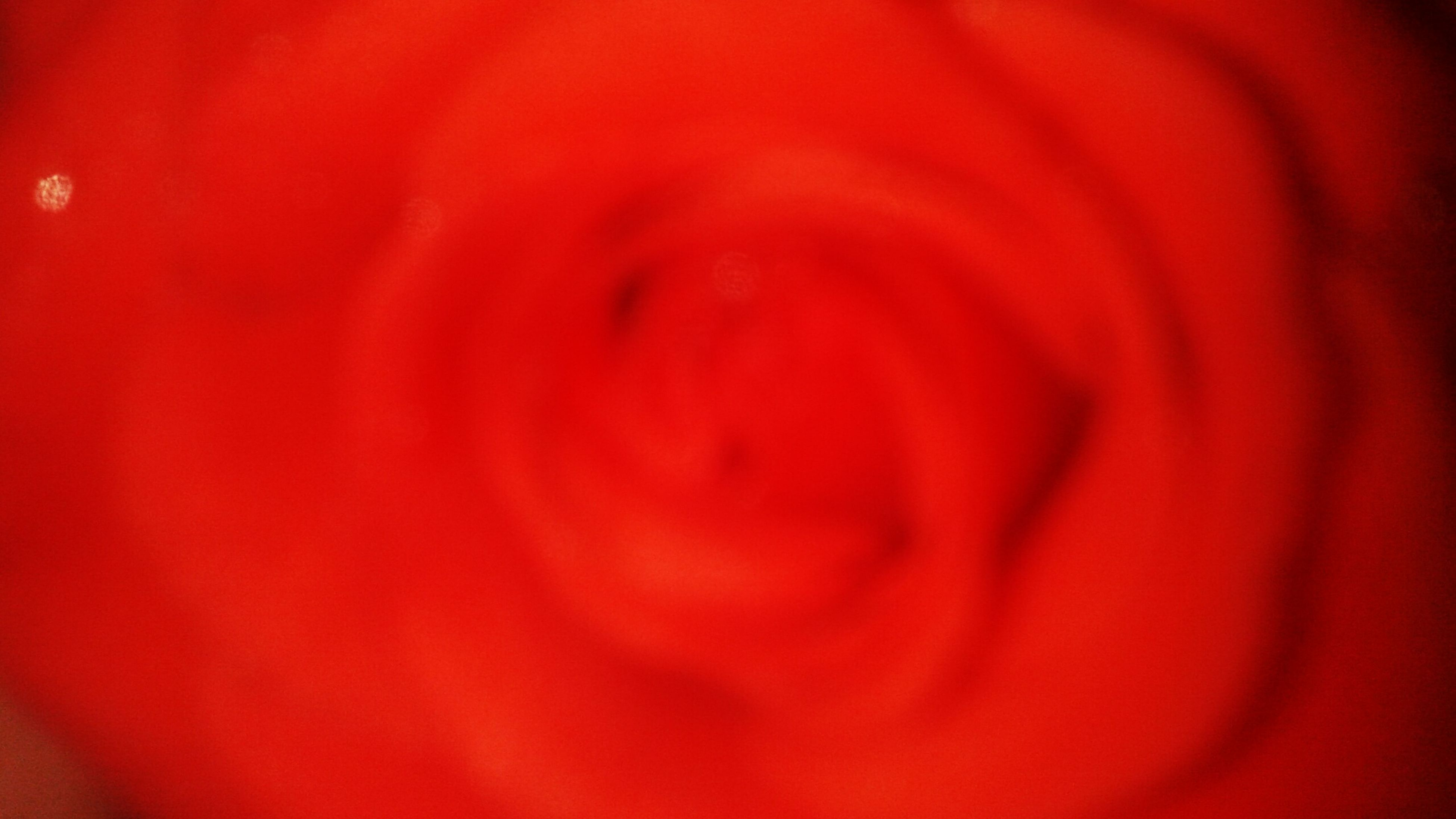 red, petal, flower, flower head, full frame, backgrounds, freshness, fragility, beauty in nature, close-up, single flower, nature, extreme close-up, macro, growth, pink color, vibrant color, no people, selective focus, rose - flower