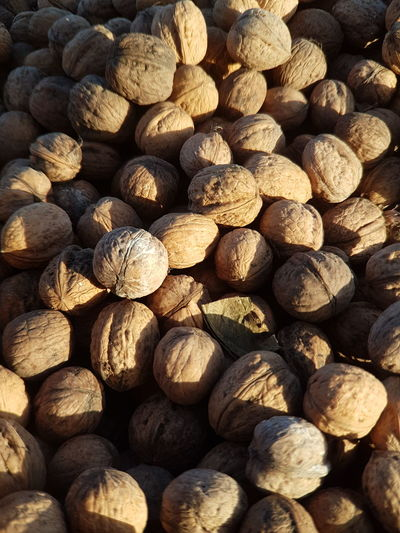 Nuts Food Healthy Eating Freshness Large Group Of Objects Walnuts Walnut Backgrounds Vitamin D Vitamins Vitamin Fresh Nutshots