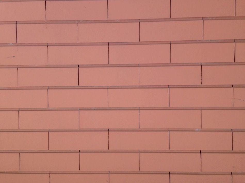 Pastel Power Wall Brick Wall Brick Bricks Brickporn Color Palette