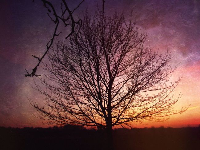 Grunge sunset. Grunge Sunset Sunset #sun #clouds #skylovers #sky #nature #beautifulinnature #naturalbeauty #photography #landscape Nature