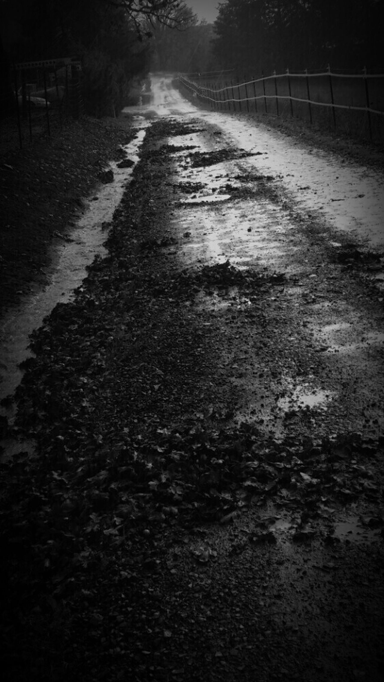 Dallas Oregon Lonely Dark Road Black And White Deadend Dead End Gravel Road Showing Imperfection