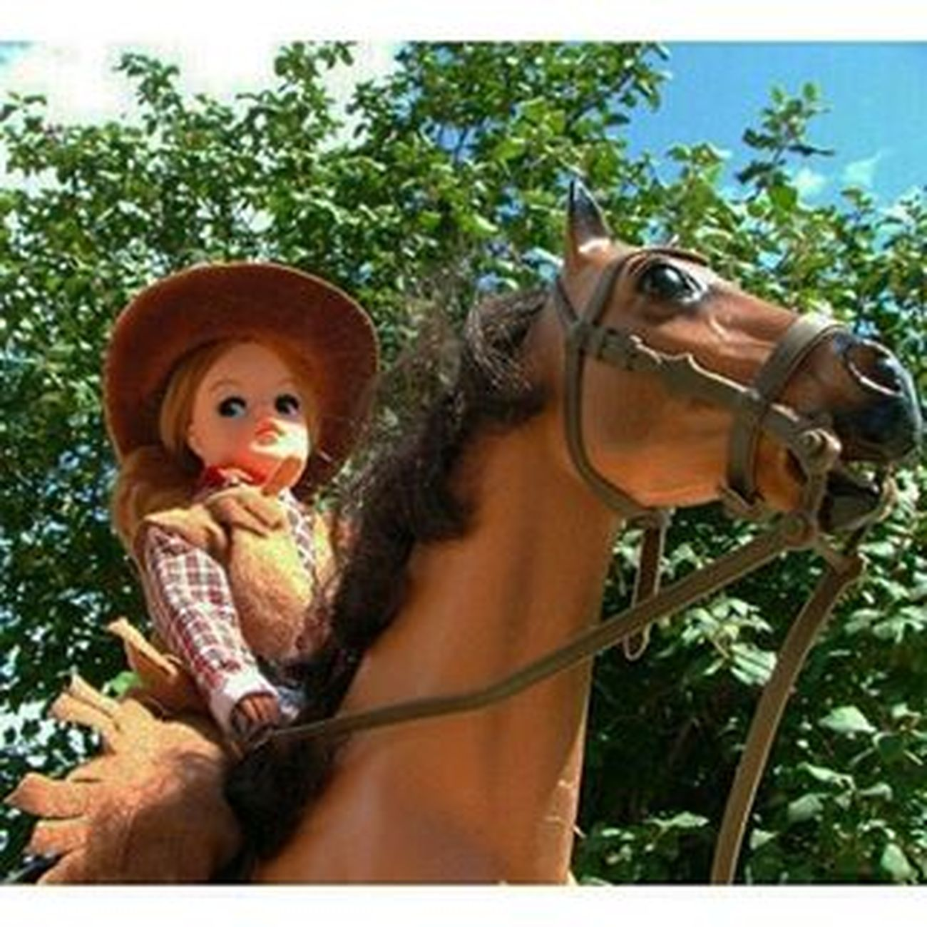 Howdy from Western Sindy . Giddyap ! ************* Doll Dolls Dollstagram Dollphotogallery DollPhotography Toy Toys Toygroup_alliance Toyartistry Toyphotogallery Toyphotography Toyunion Toyplanet Toys4life Toyslagram Toyrevolution Toycrewbuddies Ata_dreadnoughts Sindydoll Marxtoys Pedigree Vintagetoys vintage uktoymafia horse riding cowboy