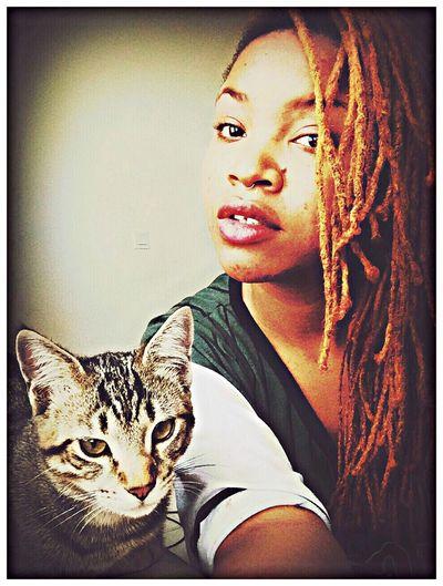Ilovemycat Cat Hello World