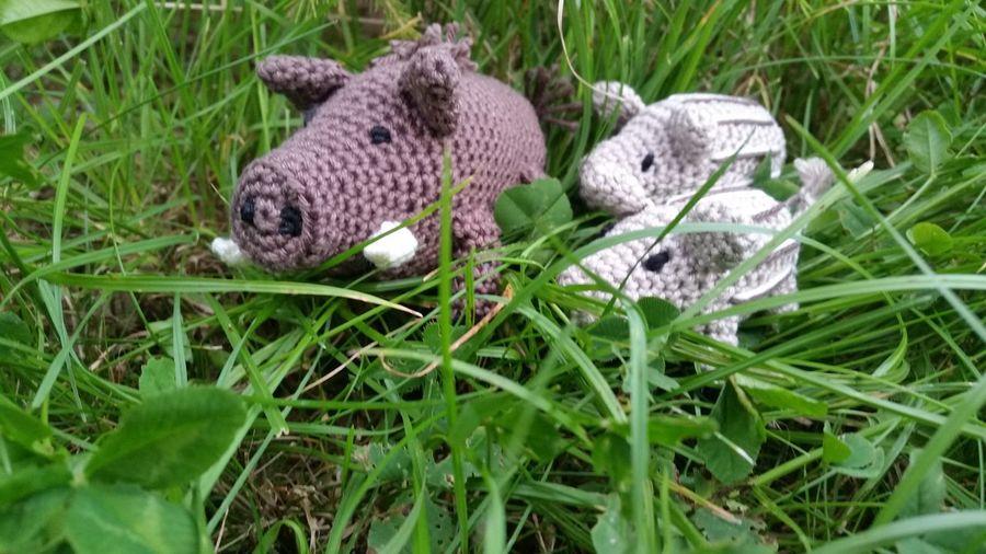 Grass Crochet Crochetlove Crocheting Is My Hobby Wildboar Animals Nature Present For A Hunter🐗🐗🐗