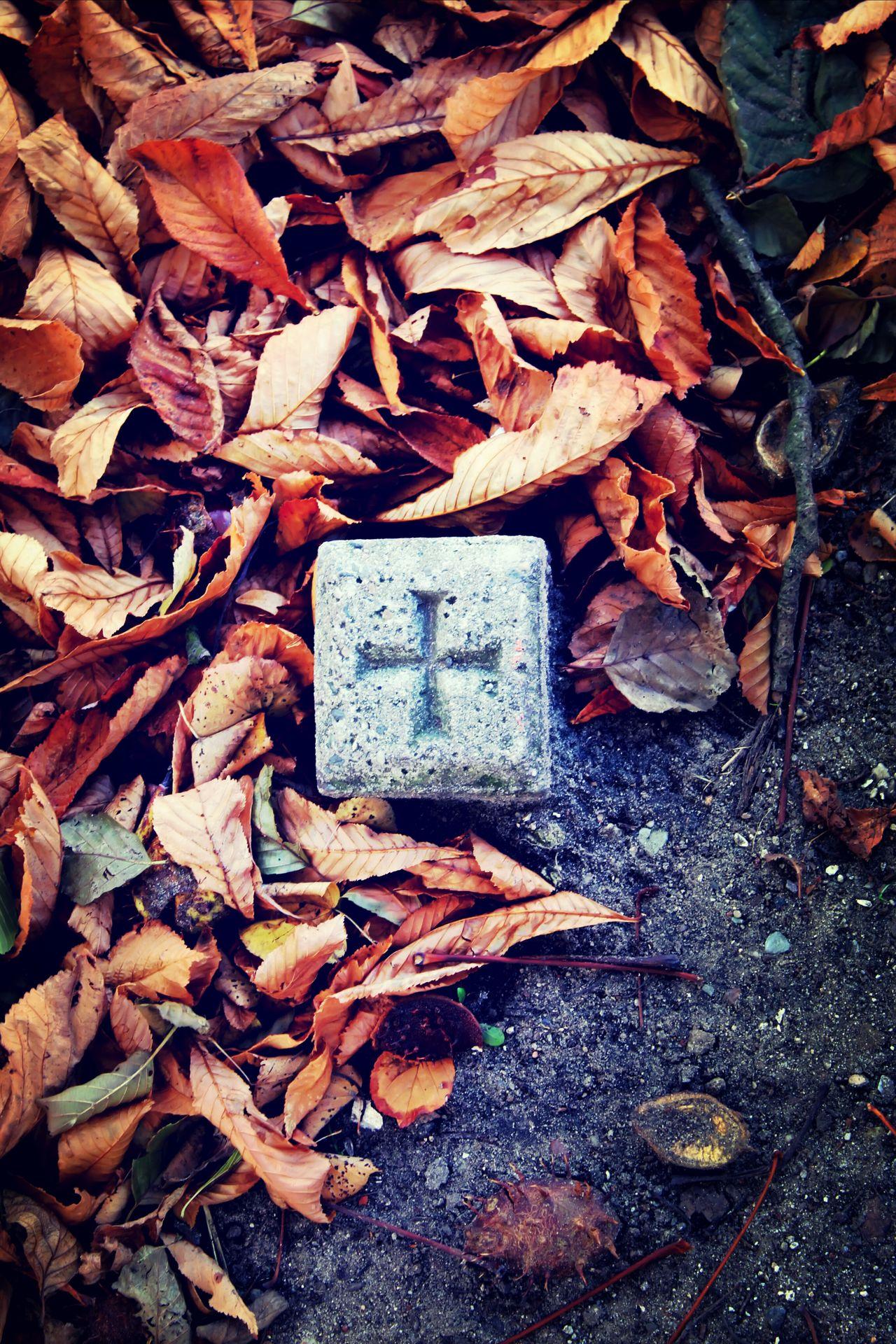 Old Stone Leaves Cross Symbol