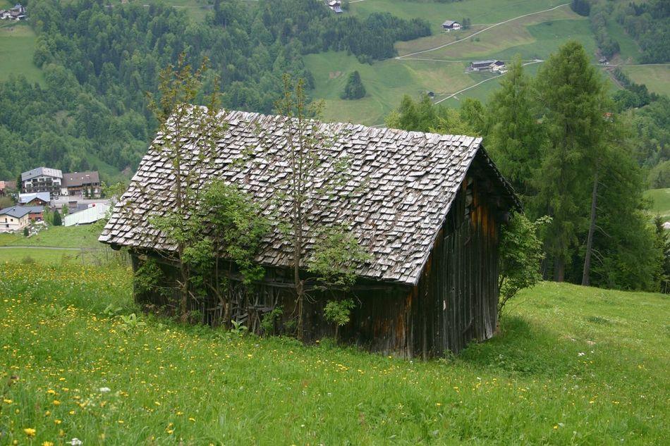Raggae Hütte Hut Uitzicht Mijn Uitzicht