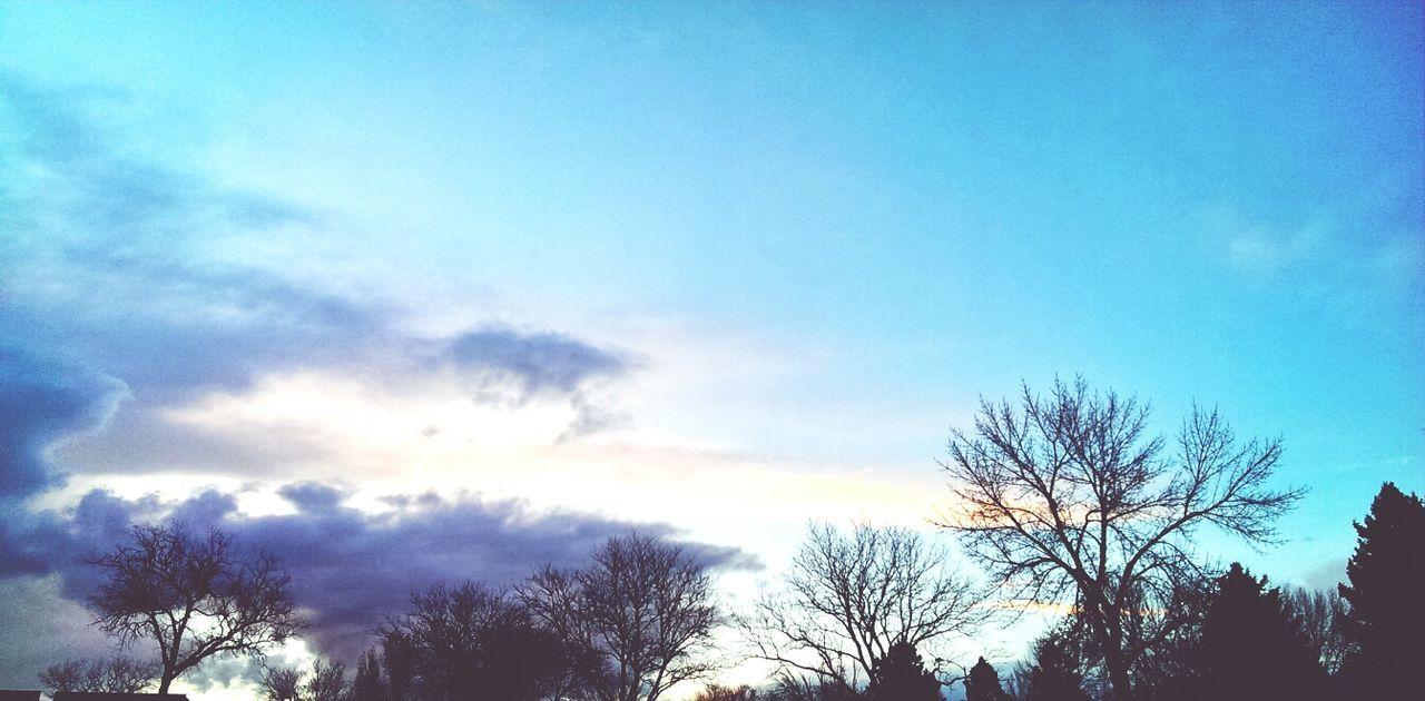 Cloudporn Trees Sunset Landscape