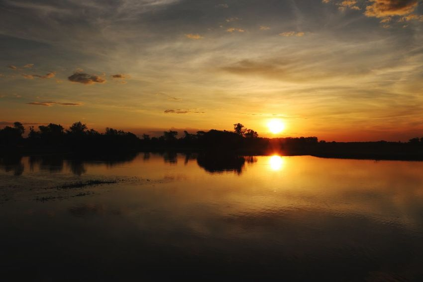 Eos750d📷 Canon Crocodiles Sunset Reflection Water Scenics Beauty In Nature Sky Be. Ready. Nature Tranquil Scene Silhouette Tranquility Tree Cloud - Sky Outdoors Lake No People Waterfront