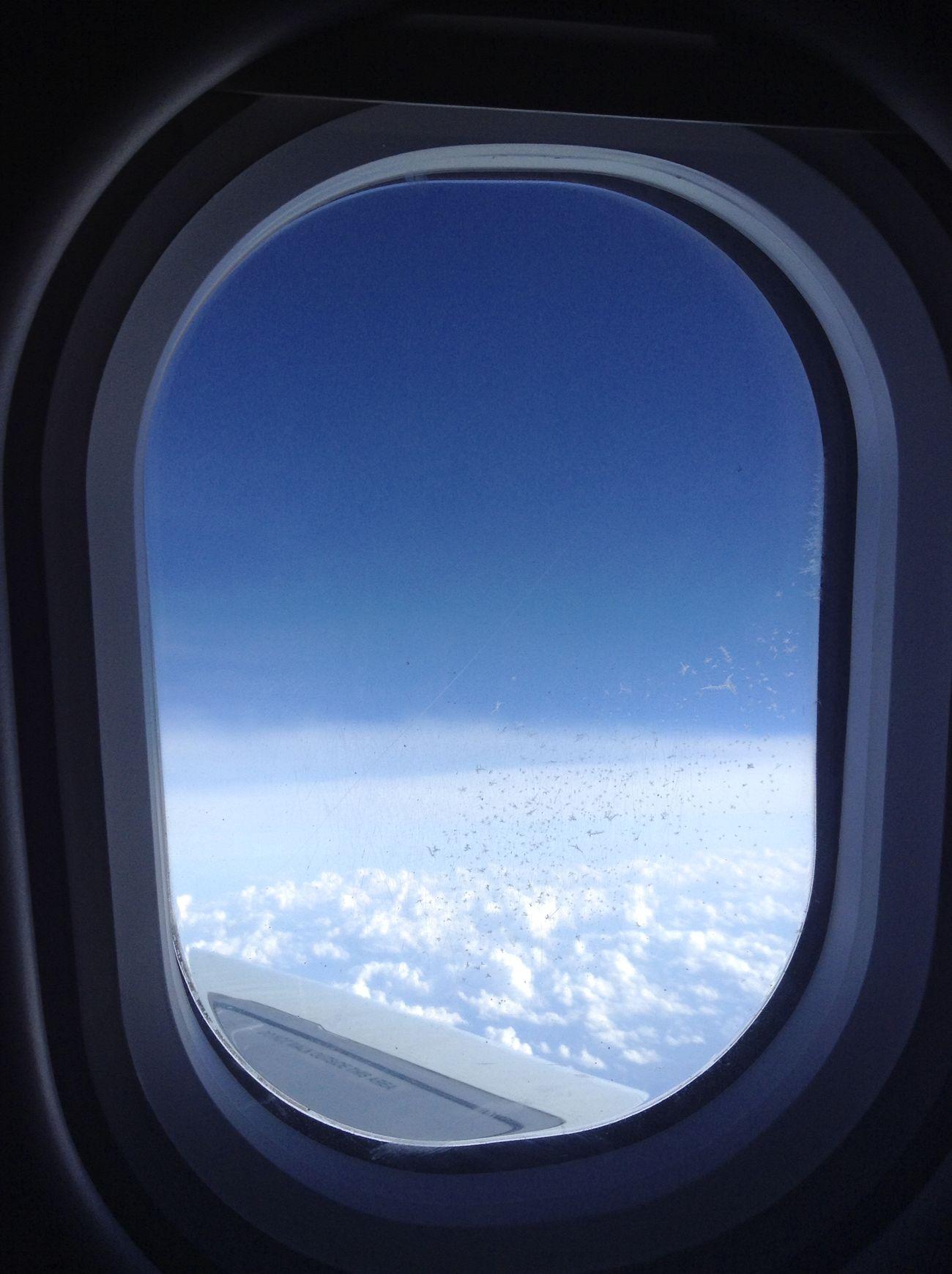 La vie nous réserve bien des choses. Et sachez que vous devez les decouvrire, car elles ne viendrons pas à vous d'elles même. Vivez, voyager, apprenez, essayer, avancer. Faites tout en votre possible pour decouvrire les mystères de la vie, car ce serons vos plus beaux souvenir, vos plus belles expériences, et surtout, votre plus grande réussite. Avancer, et réaliser vos rêves. Hello World Enjoying Life Traveling France Allemagne Belfort FIMU Music Sky Quebec