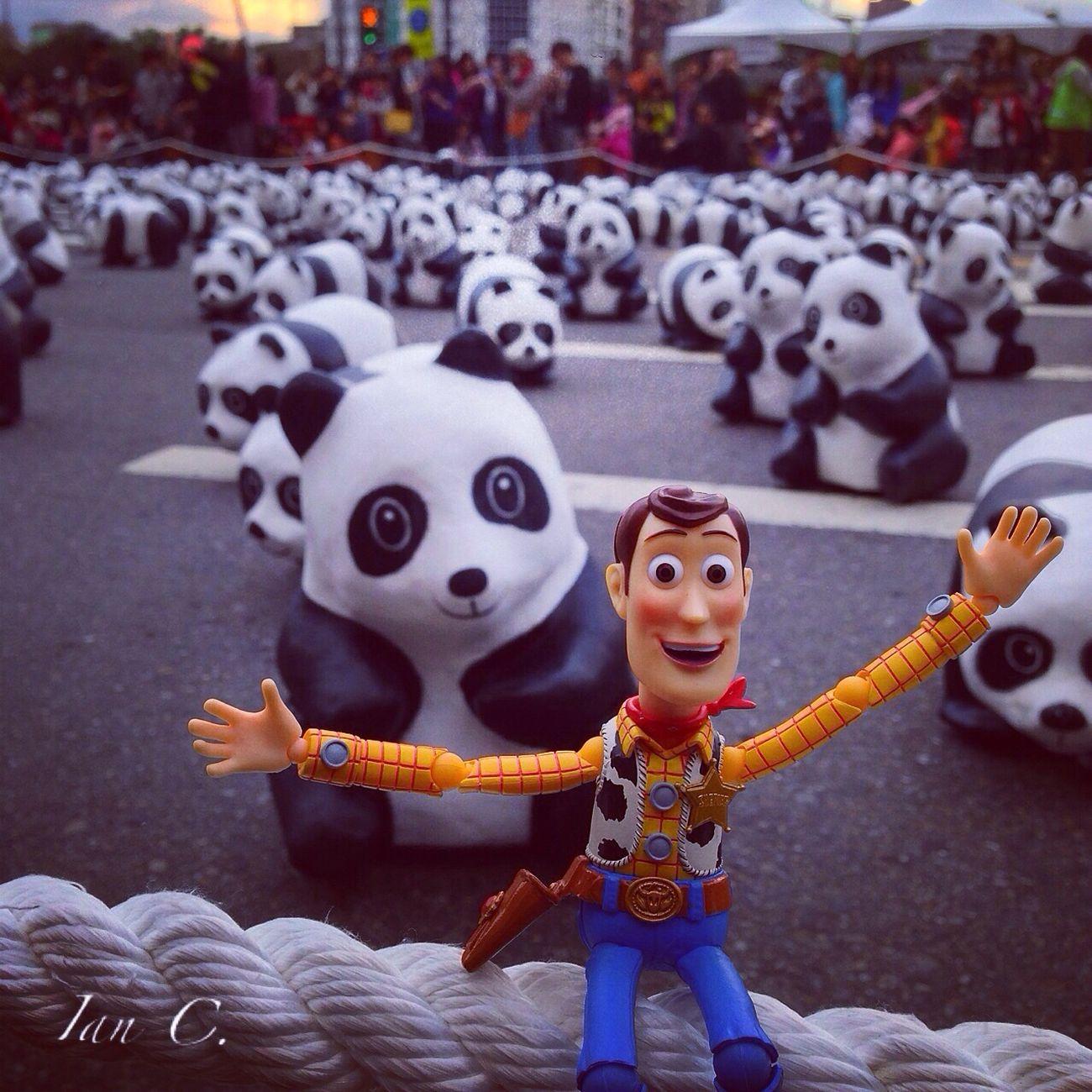 Panda Woody Toys Disney ???