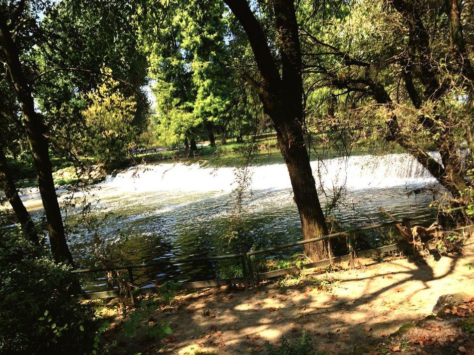 Running Running In The Park Waterfall