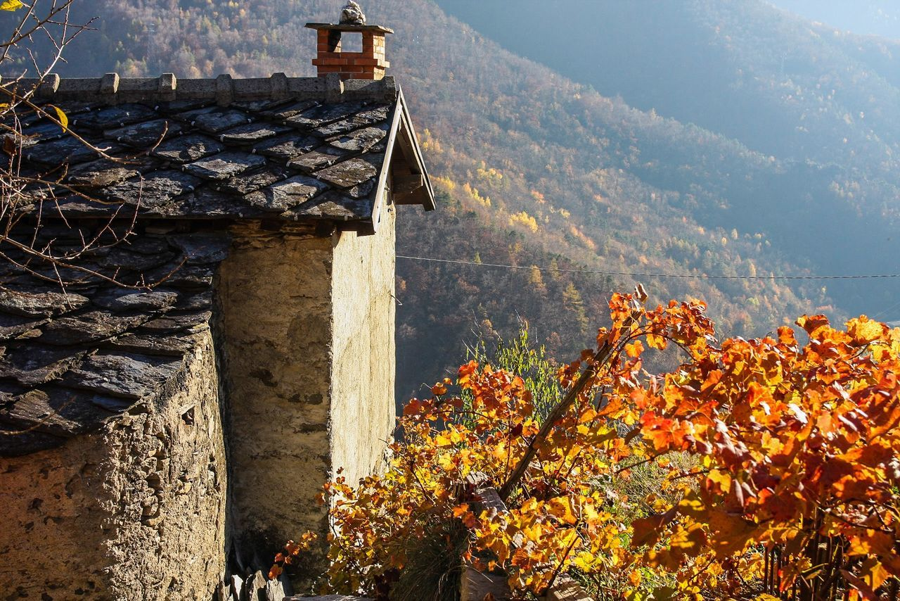 day, mountain, built structure, architecture, no people, outdoors, nature, building exterior, autumn, tree, beauty in nature, landscape, growth, scenics, sky