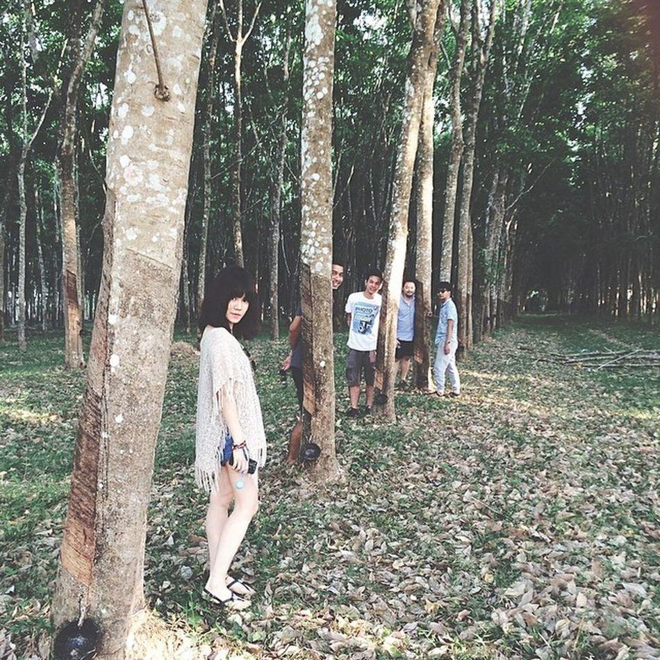 ปลูกป่า รักษ์โลก  สุด  สุด Ogilvyouting2014