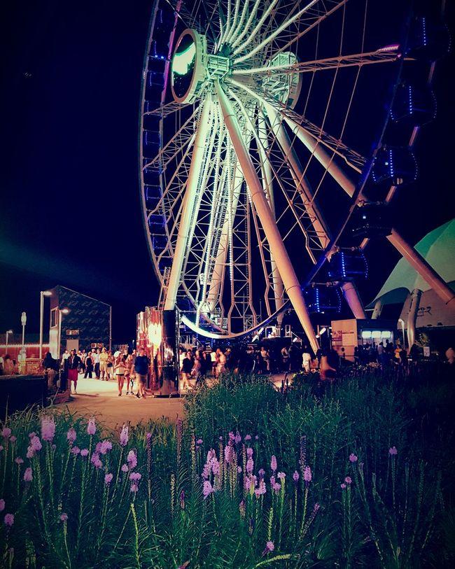 Chicago Navy Pier Ferris Wheel Ferriswheelinthecity🎡🎢 Mykindoftown