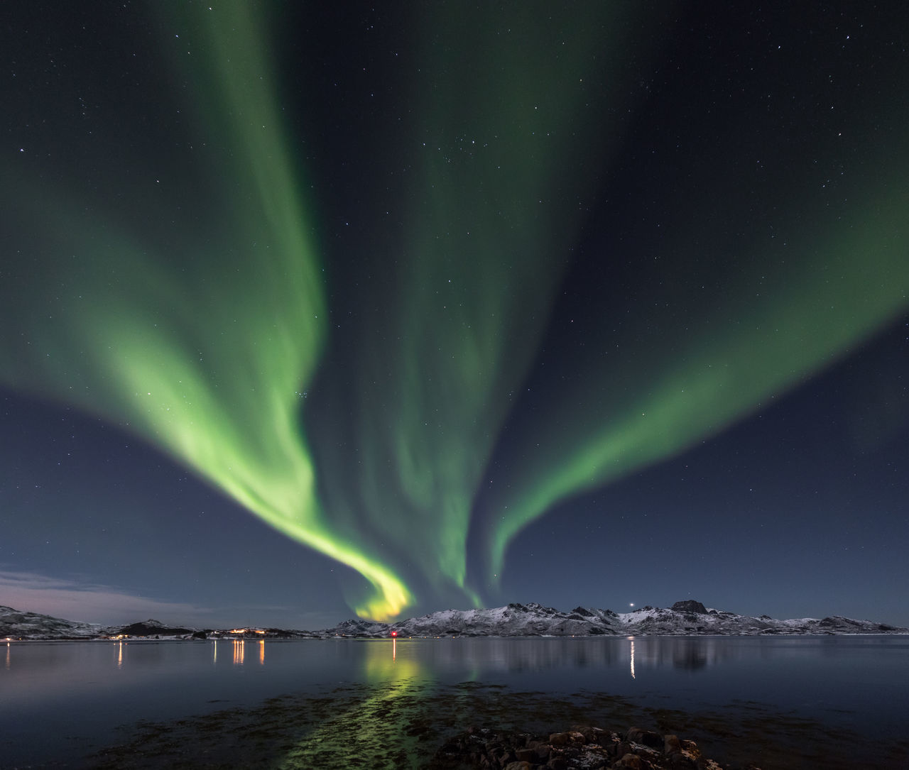 Aurora Borealis Aurora Polaris Awe Beauty Beauty In Nature Dark Dramatic Landscape Green Color Illuminated Landscape Majestic Natural Phenomenon Night Northern Lights Norway Outdoors Polar Climate Scenics Sky Space Space And Astronomy Star - Space Vesterålen Water Winter