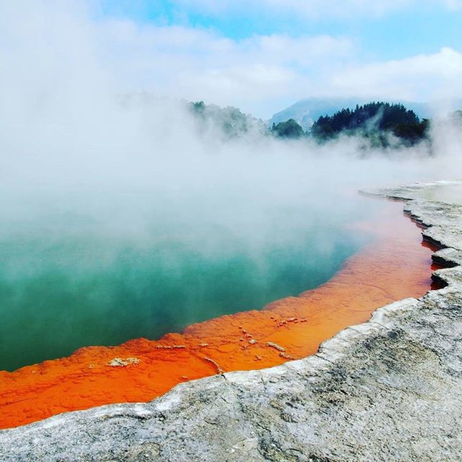 One of the the geothermal pools at Waiotapu Geothermal Park. The lastbplace we visited before we raced to the airport for the plane to Vancouver ----------------------------------------------------------- Waiotapu Waiotaputhermalwonderland Newzealand Rotorua  Northisland Geyser Explorenewzealand Travelgram Travel Instatravel Natgeo Natgeotravel Olympus Steam Clouds Takemeback Bubbles Instagram Instapic Orange