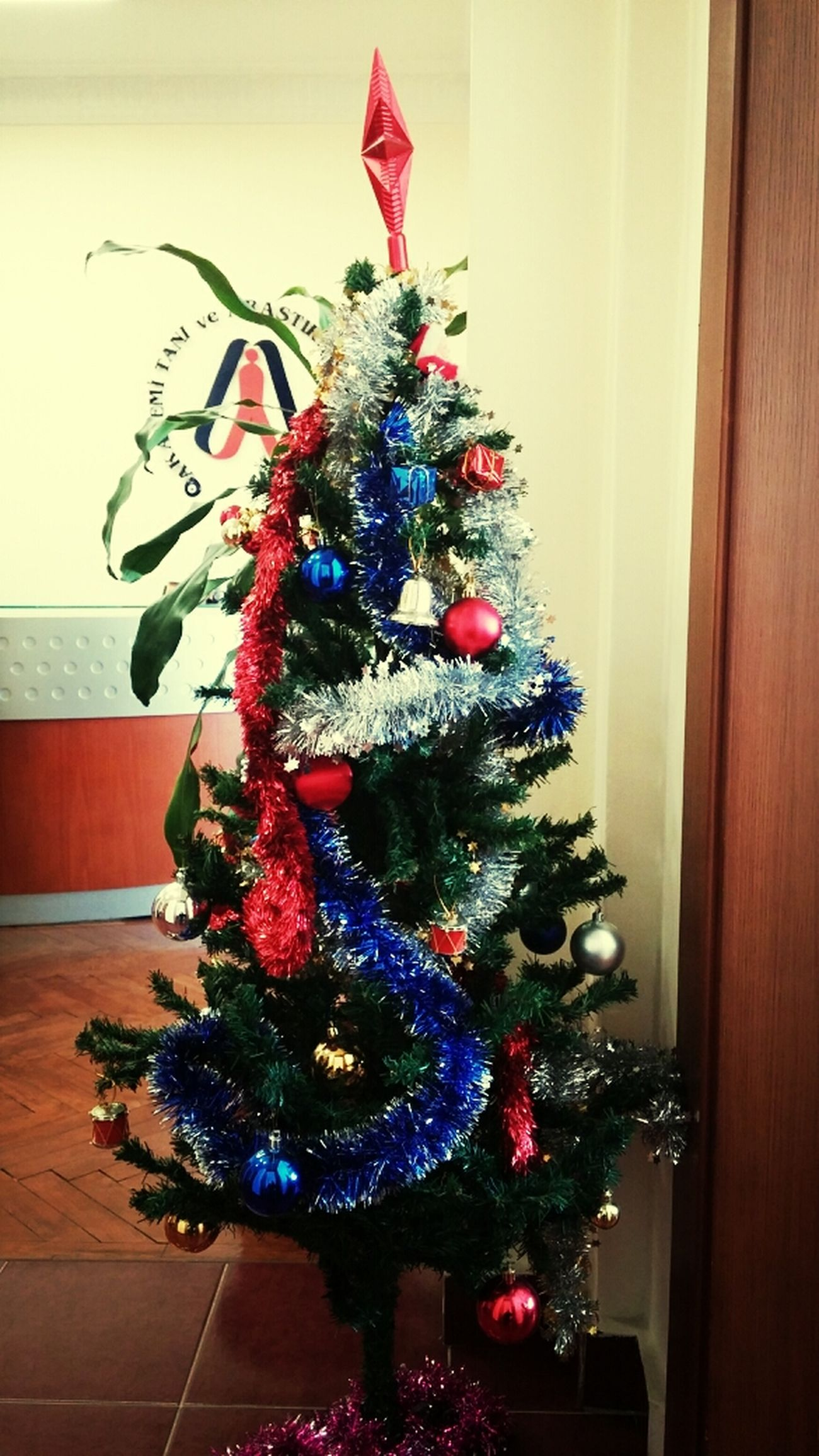 Noël Yılbaşı:) Yılbaşı Ağacı 2014