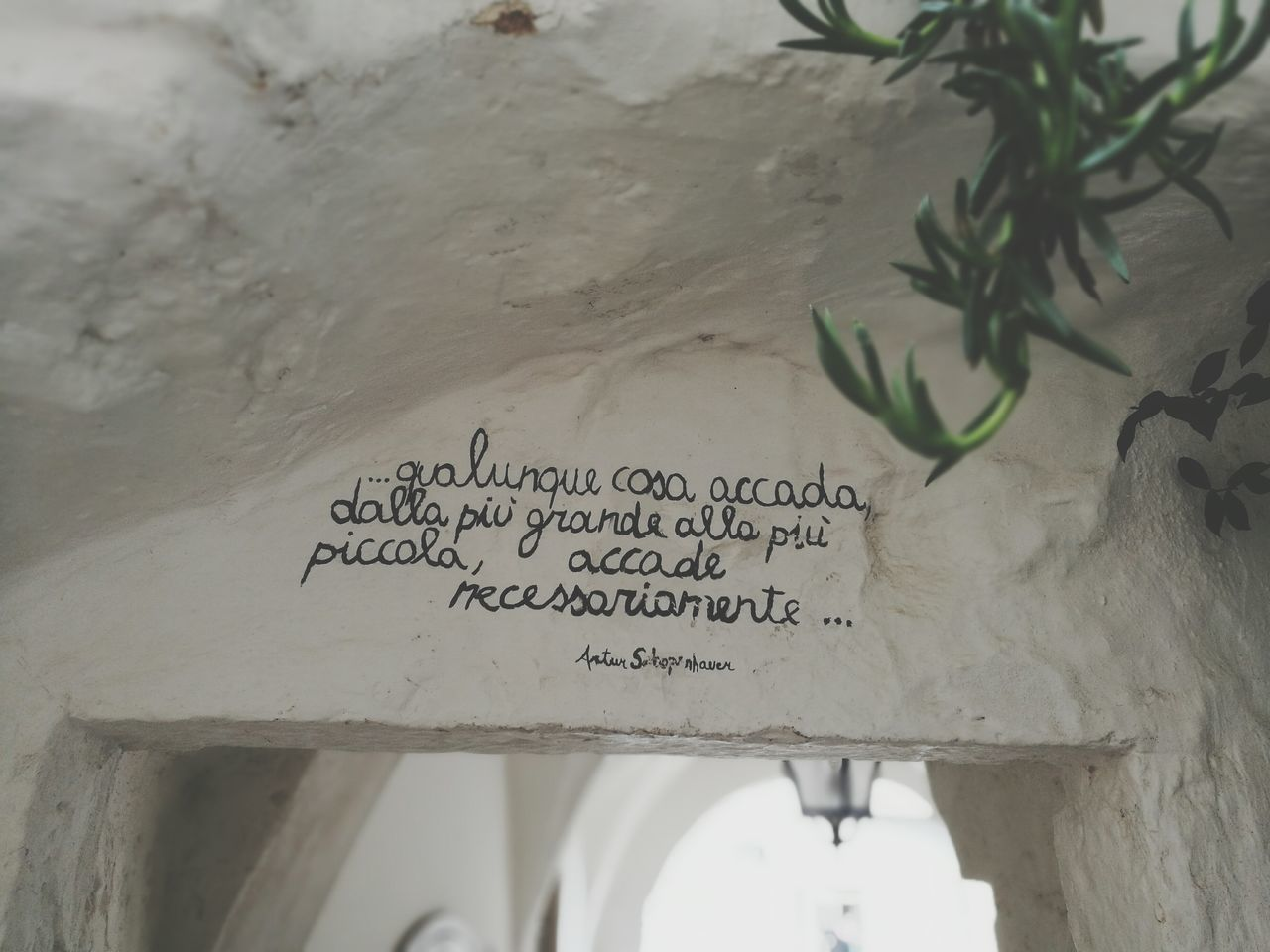 Quotes Schopenhauer Text No People Close-up Outdoors Day cisternino Valle D Itria Sky Building Exterior Travel Destinations Built Structure Architecture Travel Life In Motion Cisternino